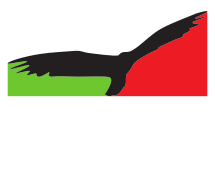 Uccello Design Logo